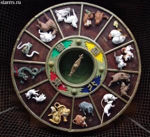 Китайская астрология, стихия, Зодиак, гороскоп